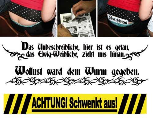 243-poschlitzsichtschutz.jpg